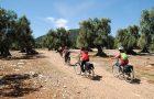 La mobilità dolce e il ruolo delle Aree Protette in Puglia